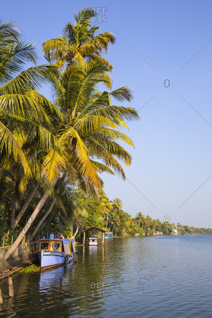 January 27, 2020: India, Kerala, Alappuzha (Alleppey), Boats on backwaters