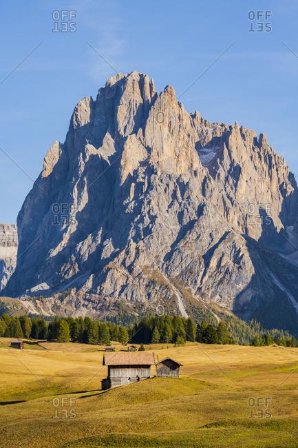 Seiser Alm Alpe di Siusi, Dolomites, Veneto, Italy, Europe