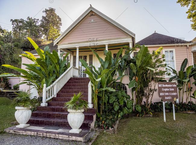 February 16, 2020: UCC Blue Mountain Coffee Craighton Estate, Coffee Plantation, Irish Town, Blue Mountains, Saint Andrew Parish, Jamaica