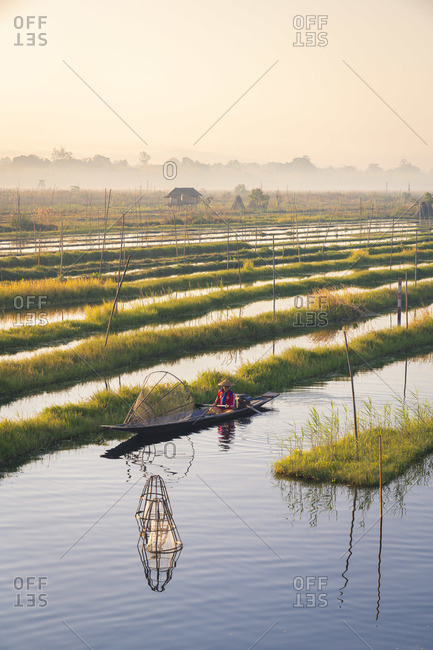 February 14, 2020: Serene scene of a fisherman catching fish using traditional conical net on early morning, Floating Gardens, Lake Inle, Nyaungshwe Township, Taunggyi District, Shan State, Myanmar