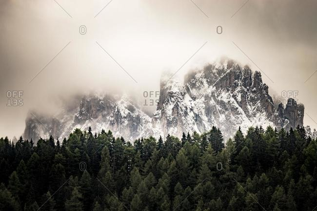 Mountain and forest landscape, Val Gardena, South Tyrol, Italy