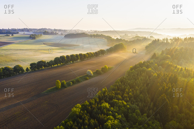 Germany- Bavaria- Icking- Drone view of countryside field at foggy sunrise