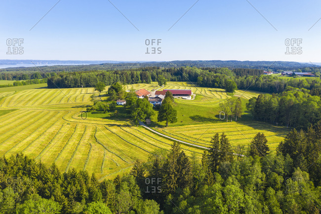 Germany- Bavaria- Oed- Drone view of small countryside hamlet surrounded by oilseed rape fields in spring