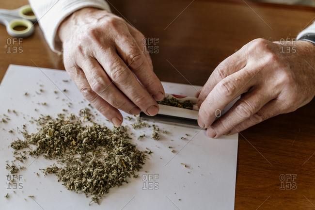 Close-up of retired senior man rolling weed on table