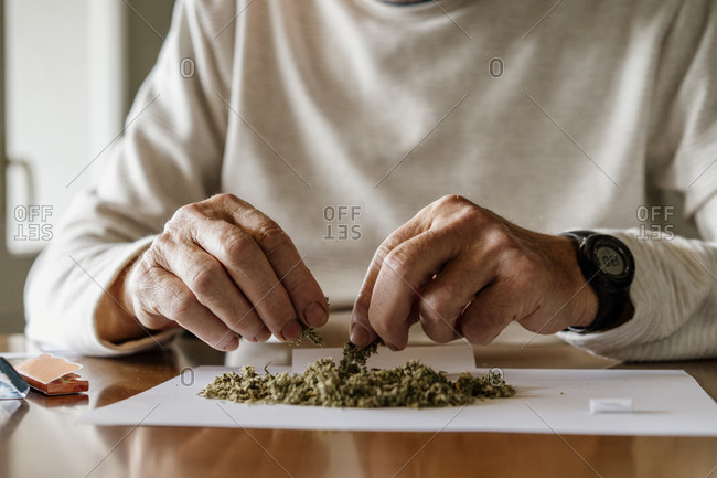 Midsection of retired elderly man preparing for rolling weed on paper at home