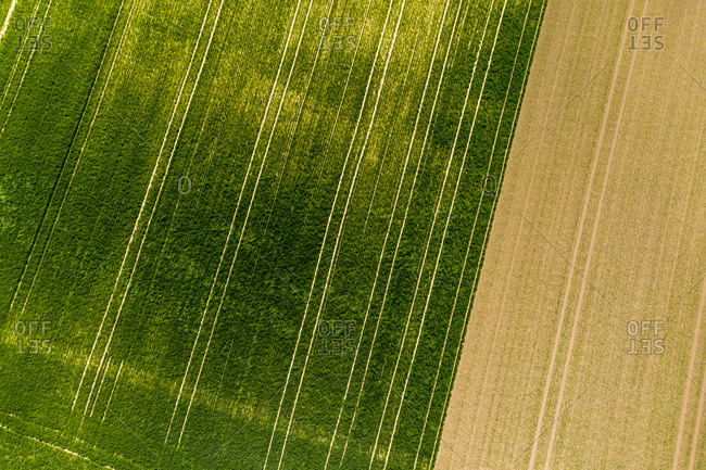 Germany- Rhineland-Palatinate- Gabsheim- Helicopter view of green countryside field in summer