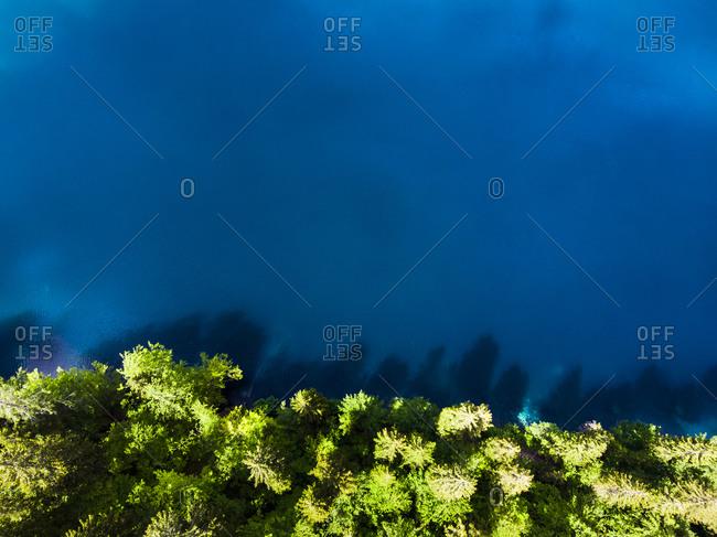 Italy- Veneto-CortinadAmpezzo- Aerial view of forestedlakeshorein Italian Alps