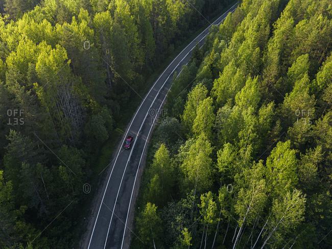 Russia- Leningrad Oblast- Tikhvin- Aerial view of car driving along asphalt road cutting through vast green forest