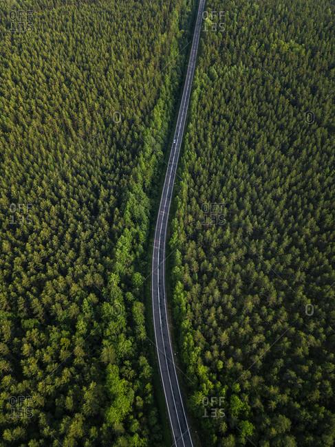 Russia- Leningrad Oblast- Tikhvin- Aerial view of asphalt road cutting through vast green forest