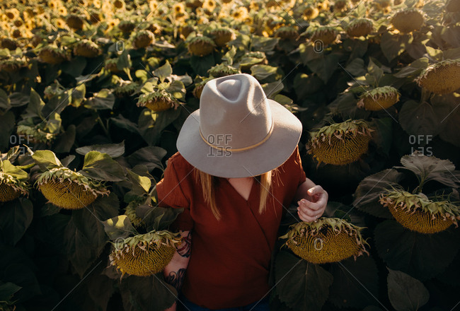 Young woman in sunflower field with hat