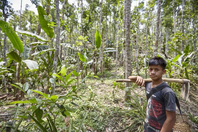 Nirala Para village, Bangladesh - May 1, 2013: A Khasi tribal boy working in the rainforest
