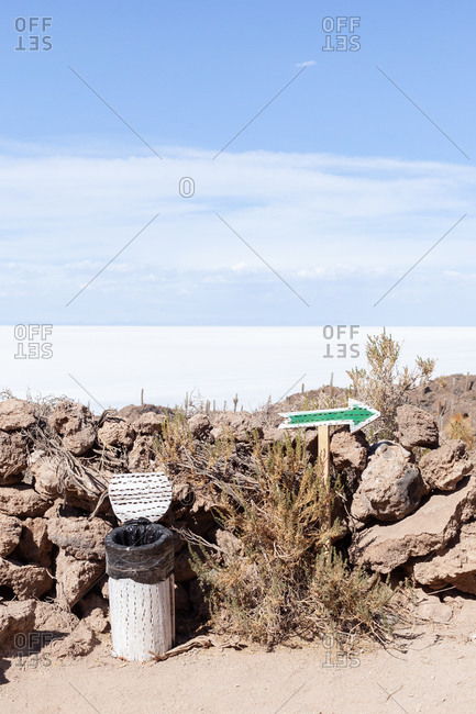 Cactus and trash can in Uyuni salt-flat in Bolivia, South America
