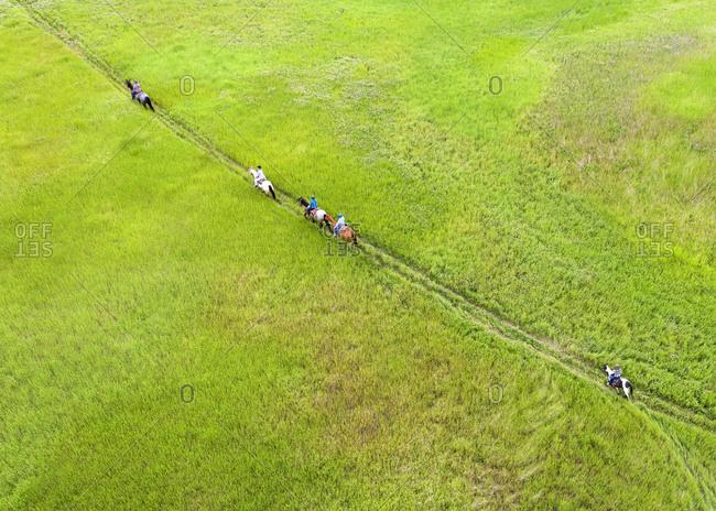 Trail riders riding through meadow, Merritt, British Columbia, Canada