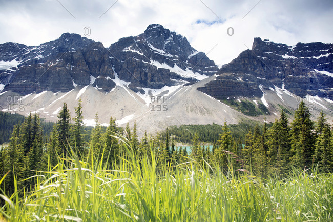 Crowfoot Mountain Valley in the Canadian Rockies at Banff National Park, Alberta, Canada