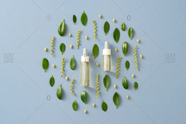 Bottle of essential oil and leaves on light blue background