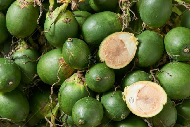 Fresh betel nuts, close up