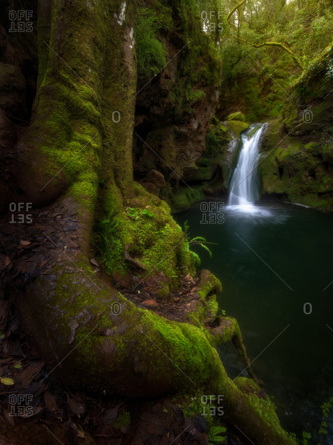 Tranquil scenery of small waterfall and lake located in green mossy woods in Cordoba Spain