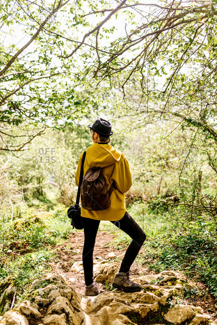 Back view of tranquil female tourist in stylish wear standing in green woods and enjoying nature
