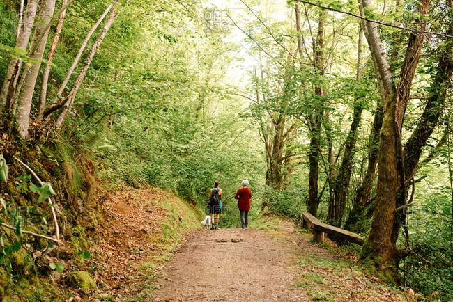 Back view of young androgynous female and senior lady admiring scenery of picturesque woods during vacation