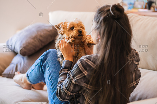 Happy young female in casual wear holding cute fluffy little dog while sitting in front of laptop during free time at home