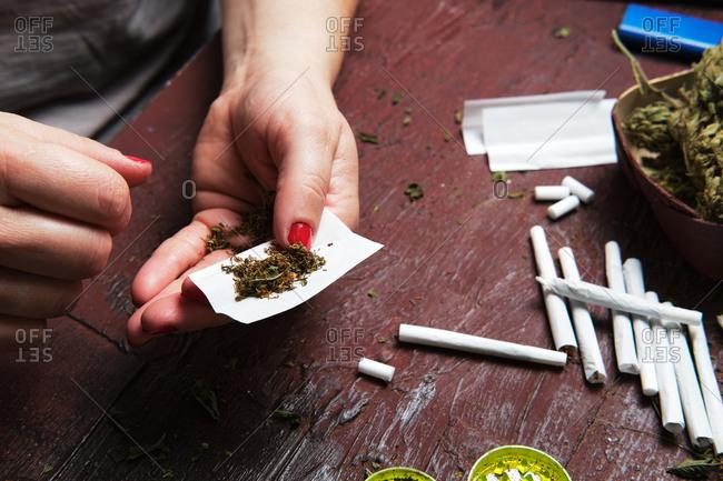Unrecognizable female smoker making marijuana joint