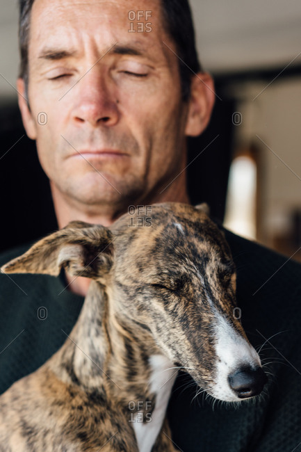 Crop mature male owner and cute Whippet dog closing eyes while resting at home together