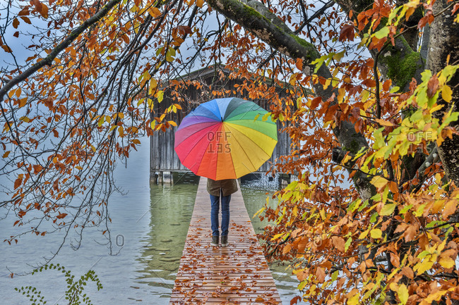 Rainy day at the Kochel am See, Kochelsee, Bad Tolz-Wolfratshausen district, Upper Bavaria, Germany, Europe.