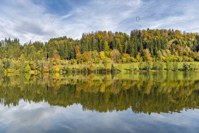 Wackersberg, Bad Tolz-Wolfratshausen district, Upper Bavaria, Germany, Europe. Autumn at the Stallauer Weiher