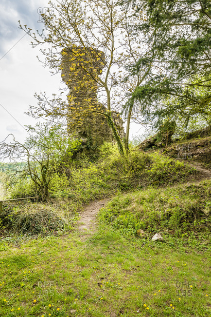 Castle ruin Schlossbockelheim, Hildegard von Bingen was here, spur castle on the middle Naheland, stair tower still preserved