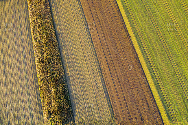 Aerial view arable land, Swabian Forest in autumn, Rems-Murr-Kreis, Baden Wurttemberg, Germany