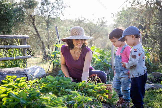 Positive woman smiling and teaching cute children to take care of strawberry plant on summer day on farm in Tuscany, Italy