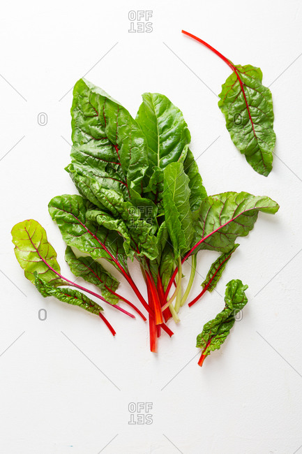Overhead view of a bunch of fresh green chard leaves