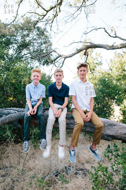 Portrait Of Three Handsome Boys Sitting On A Tree Branch