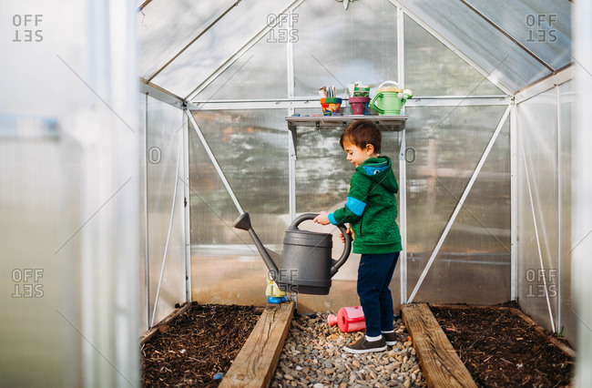 Young boy watering seeds in backyard greenhouse during spring time