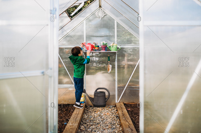 Young boy reaching for watering can in backyard greenhouse in spring