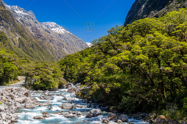 Milford Sound landscape, snowcapped mountains, a fast flowing river and thick woodland.