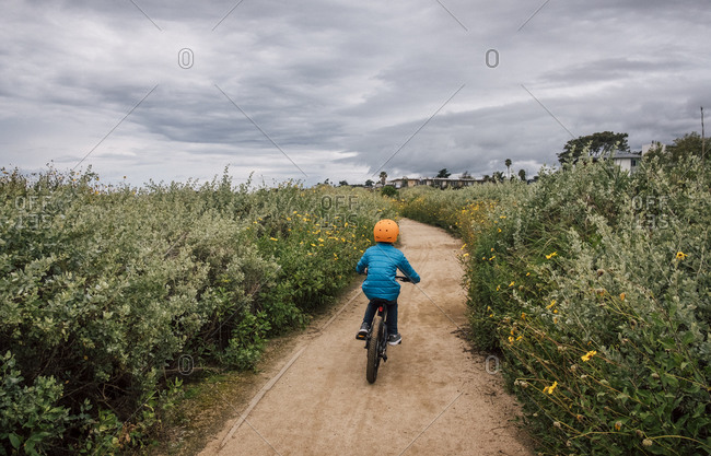 Rear view of boy cycling along a path with Bush Sunflower, near Santa Barbara, California, USA.