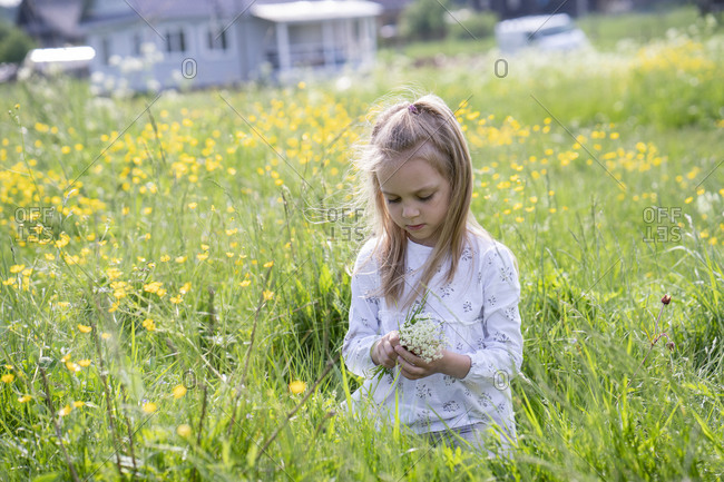 Cute girl picking flowers while sitting on grassy land