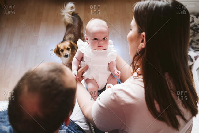 Cute baby with parents and dog in living room at home