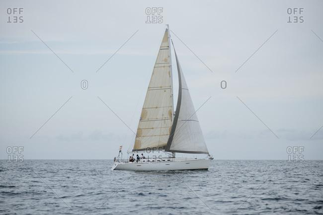 Sailboat navigating in sea against sky