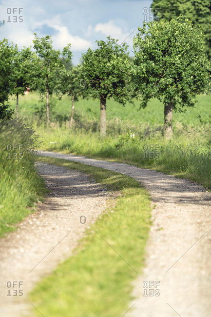 Gravel paths in the countryside