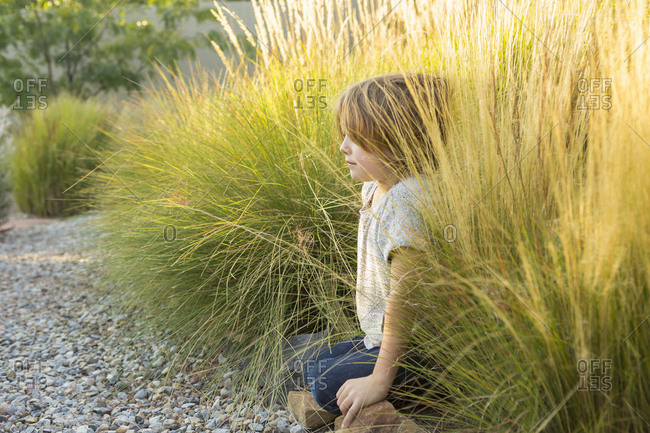 4 year old boy playing in tall grass at sunset