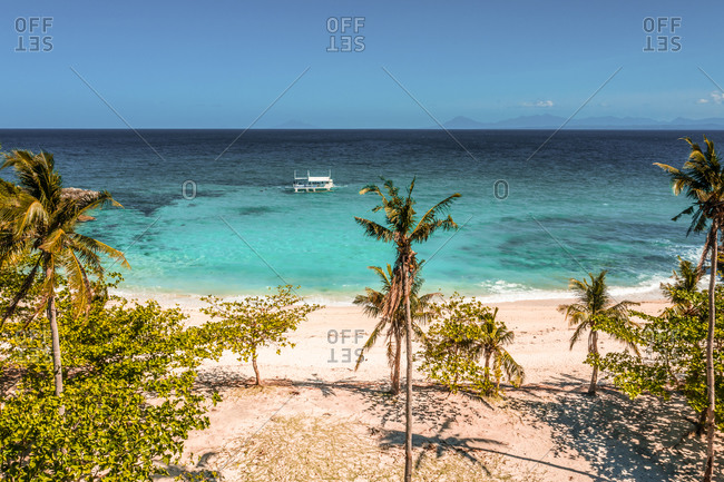 Aerial view of white sand and thresher shark diving in Bantigue Beach in Malapascua Island, Province of Cebu, Philippines