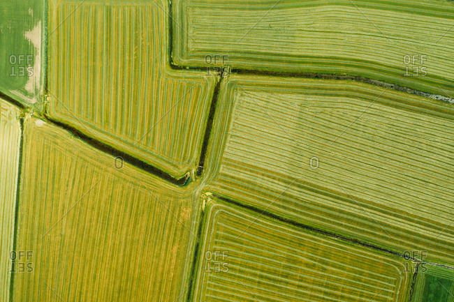 Aerial view of fresh mowed farmland in Friesland, The Netherlands.