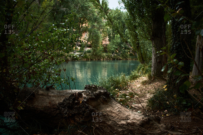 Fantastic lake surrounded by a forest in Cuenca (Spain)