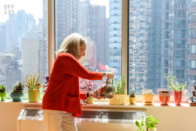 Stylish senior woman watering plants in the windowsill of apartment