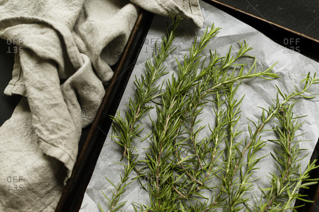 Rosemary on Cookie Sheet Ready for Drying