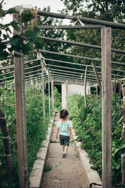 Little girl in homemade green house. Back view.