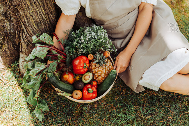 Hands of woman holding basket of vegetables while sitting under tree