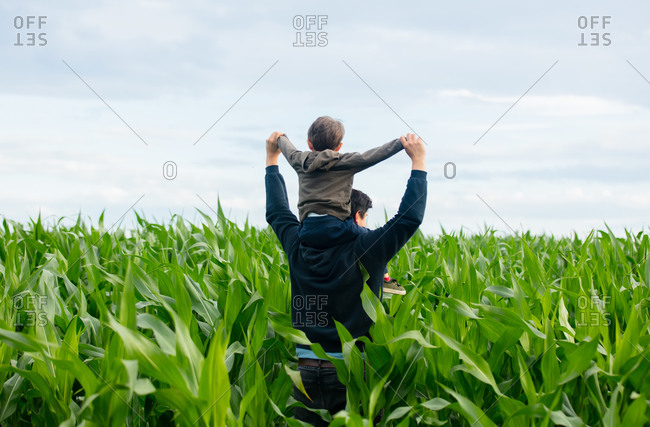 Father and son in green cornfield